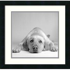 'Tally' by Amanda Jones Framed Photographic Print