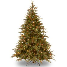 Fraser 6' Green Artificial Christmas Tree with 800 LED Multi Lights and Stand