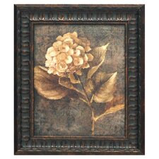Antique Hydrangea II Framed Painting Print