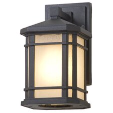 Cardiff 1-Light Outdoor Wall Sconce