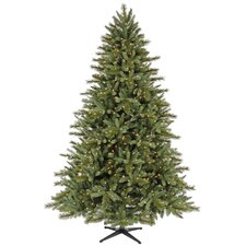 Tannenbaum 6' Christmas Tree with 450 Lights and Stand