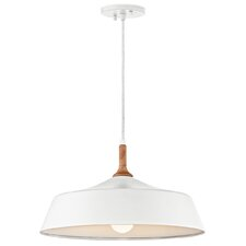 Danika 1-Light Inverted Pendant
