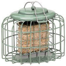 Suet Cake Oval Suet Bird Feeder