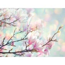 Magnolia Bokeh by Ros Berryman Canvas Wall Art