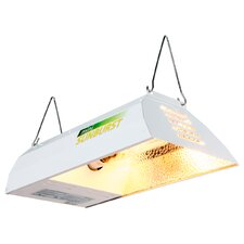 HPS Mini Sunburst with Lamp