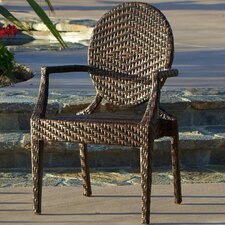 Giesel PE Wicker Outdoor Arm Chair
