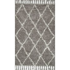 Gizon Hand-Knotted Gray Area Rug