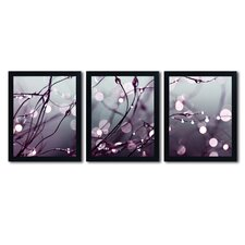 Somewhere over the Rainbow by Beata Czyzowska-Young 3 Piece Framed Photographic Print Set