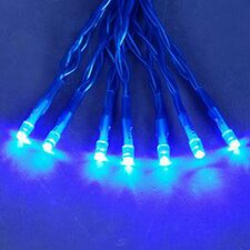 20 Led Wide Angle Christmas Light String