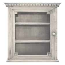 "Architectural 22"" W x 24"" H Wall Mounted Cabinet"