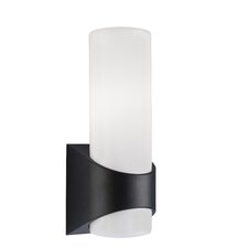 Celino 1-Light Outdoor Sconce