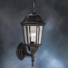Allmon 1-Light Outdoor Beveled Glass Shade Wall Lantern