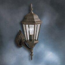 Allmon 1-Light Outdoor Wall Lantern