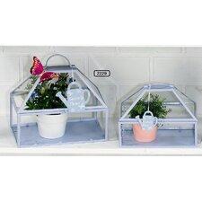 2-tlg. Terrarium-Topf-Set Botanico