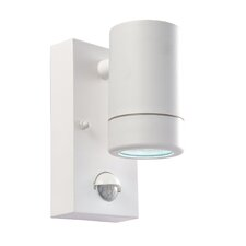 Icarus 1 Light Outdoor Sconce