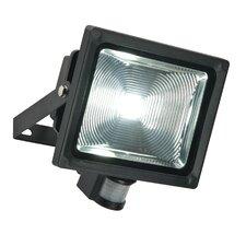 Olea 1 Light LED Flood/Spot light