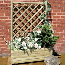 Rosa Planter with Trellis