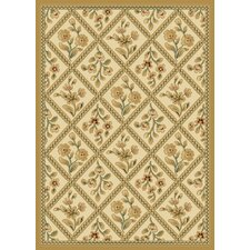 Transitional Dimensions Baylor Ivory / Wheat Rug