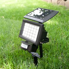 30-Light Flood Light