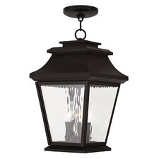 Campfield 3-Light Outdoor Hanging Lantern