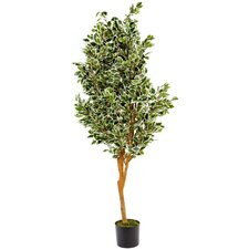 Artificial FicusTree in Pot