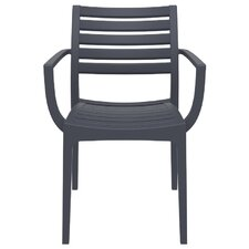 Nikoleta Dining Arm Chair (Set of 4)