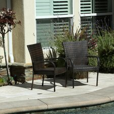 Hawes Outdoor Wicker Chair (Set of 2)