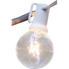 25-Light 25 ft. Globe String Lights