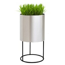 Knox Iron Pot Planter