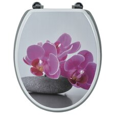 Lily Elongated Toilet Seat