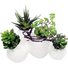 Mixed Faux Succulents Head Desk Top Plant in Decorative Vase