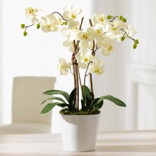 Orchid Planter Artificial Plant