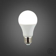 6W A19 LED Light Bulb (Set of 6)