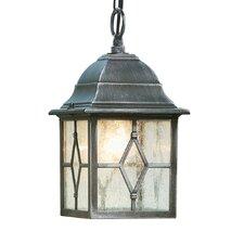 LaMeuse 1 Light Outdoor Hanging Lantern