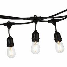 Ambience Pro LED 15-Light 48 ft. Globe String Lights