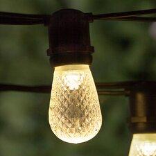 24-Light Globe String Lights