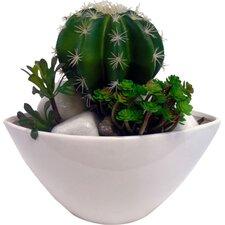 Faux Cactus Mix Desk Top Plant in Planter