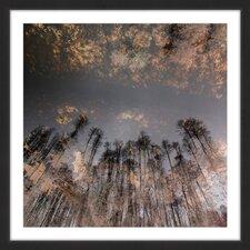 'To the Sky' by Karolis Janulis Framed Photographic Print