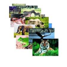 Wild Animal Poster Set (Set of 10)