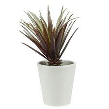 Artificial Aloe Succulent Desk Top Plant in Pot