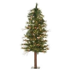 Mixed Country Alpine 4' Green Artificial Christmas Tree with 100 Unlit Clear Lights with Stand