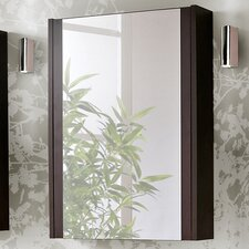 Genipabu 50cm x 69cm Surface Mount Mirror Cabinet