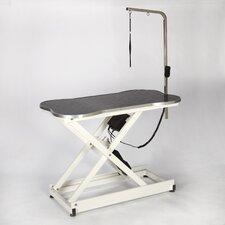 Bone Shaped Electric Table