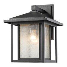 Aspen 1-Light Outdoor Wall Lantern