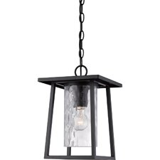 Bissonnette 1-Light Outdoor Hanging Lantern