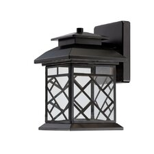 Woodmere 1-Light Outdoor Wall Lantern