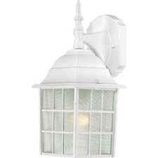 Adams 1-Light Outdoor Wall Lantern