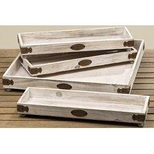 Hannes 4-Piece Decorative Tray Set