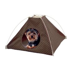Popup Dog House