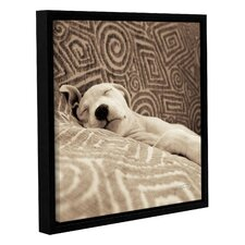 Dog Tired Framed Photographic Print on Wrapped Canvas